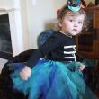 Erin's Peacock Halloween Costume- Tutu